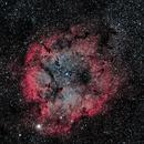 IC1396: The Elephant's Trunk Nebula,                                Daniel Tackley
