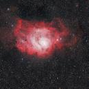 M8,                                Michael Schulze