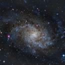 M33 LRGB,                                Tim Hutchison