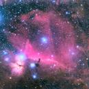 Flame and Horsehead nebulae,                                Andrew Lockwood