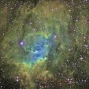Bubble Nebula in SHO,                                David McClain