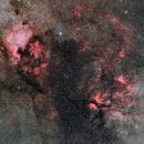 Cygnus North,                                Yuichi Kawamoto