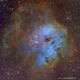 The Tadpoles - IC 410 - Hubble Palette,                                Eric Coles (coles44)