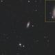NGC 2841 -DSLR,                                Francis Couderc
