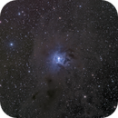 NGC 7023 Iris nebula in LRGB,                                Jean-François Douroux