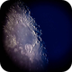 Daytime Moon close-up,                                Donnie B.