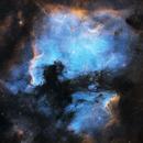 North America and Pelican Nebula in SHO,                                Mike Lloyd