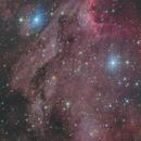 IC5067-5070 Pelican Nebula,                                Masahiro Takahashi