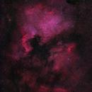 NGC 7000 & IC 5070,                                David McGarvey