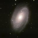M81 Bodes Galaxie am 26.3.20,                                Peter Schmitz