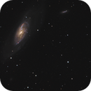 M106 and its galactic neighbors,                                Phillip Hahn