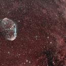 Crescent Nebula,                                Bill