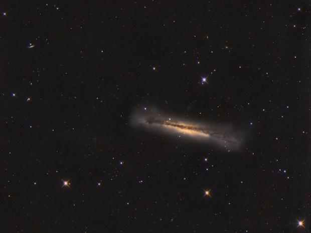 NGC 3628  Leo,                                GJL