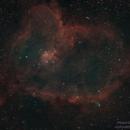 The Heart Nebula (IC 1805),                                Michael Sadlon