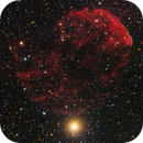 IC 443 Jellyfish Nebula - SH2-248 - IC 444 - LDN 1564 - LRGB,                                Jerry Macon