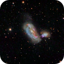 NGC 4490 (Cocoon Galaxy),                                KuriousGeorge