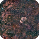 Nebulosa Creciente (Crescent Nebula) HaRGB - NGC 6888,                                Alfredo Beltrán
