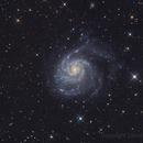 M101,                                Dave (Photon)