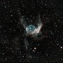 NGC 2359 Thor's Helmut,                                David Scharlach