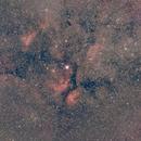 IC 1318: Gamma Cygni Nebula (2019),                                Kurt Johnston