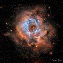 Nebula - Rosette Nebula,                                Stephen Heliczer FRAS