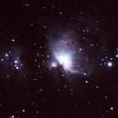 First Orion Nebula,                                Mike Coates