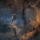 IC1396 SHO,                                Ferfex