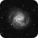 Supernova in M61 - 2020jfo Timelapse Animation,                                Jason Guenzel