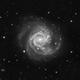 Supernova in M61 - 2020jfo Timelapse Animation,                                Jason Guenzel