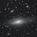 NGC7331 LRGB,                                andrea tasselli