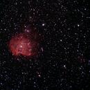 Monkey Head Nebula, NGC 2174, along with SH2-247,                                Steven Bellavia