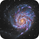 M101,                                Miguel Noppe