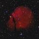Sh2-302 Emission Nebula in Puppis,                                herwig_p