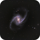 The Great Barred Spiral Galaxy NGC 1365 - my first reasonable galaxy image,                                Niall MacNeill