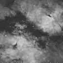 IC 1318 - Butterfly Nebula Ha,                                Mike Hislope