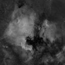 NGC 7000, IC 5070, Ha,                                Stephen Garretson