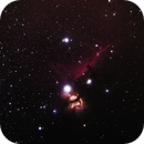The Horsehead Nebula - Second Try,                                Greg Derksen