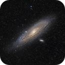 M31 Andromeda Galaxy,                                Allan Alaoui