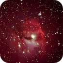 IC 2177,                                Günther Eder