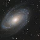 M81 - Bode's Galaxy,                                Tim Hutchison