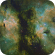 IC1318 - Nébuleuse du Papillon,                                Francis Moreau