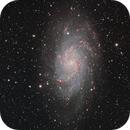 Messier 33 - The Triangulum Galaxy,                                Arun H.