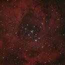 Rosette Nebula NGC2244 HaRGB CCD+DSLR,                                AndreP