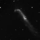 NGC 4656,                                Kevin Galka