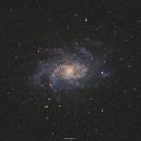 Triangulum Galaxy,                                Henrique Silva