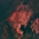 NGC7000,                                Francisco Bitto