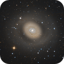 M94 and its halo,                                Billy Liang