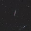 NGC 4656, NGC 4631,,                                Ola Skarpen SkyEyE