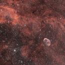 Crescent Nebula Widefield,                                Adam Jaffe