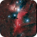 Horsehead Nebula and more,                                Alf Jacob Nilsen